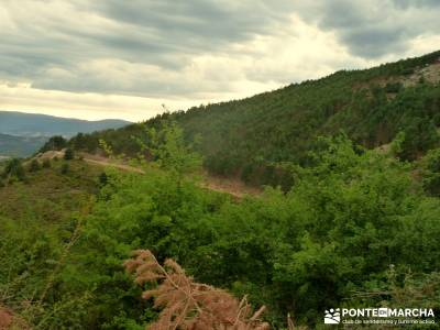 Vespertina - Senderismo Sierra del Rincón; rutas x madrid romanico segoviano salidas semana santa